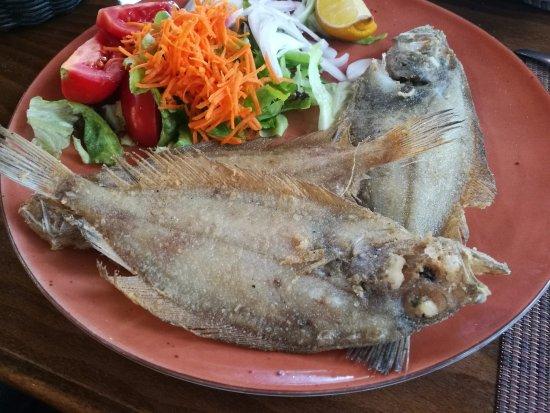 Pescado del dia - Restaurant Ca La Nati - Albons (Girona)