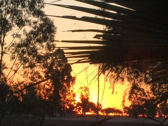 Blackall, Australia: photo1.jpg