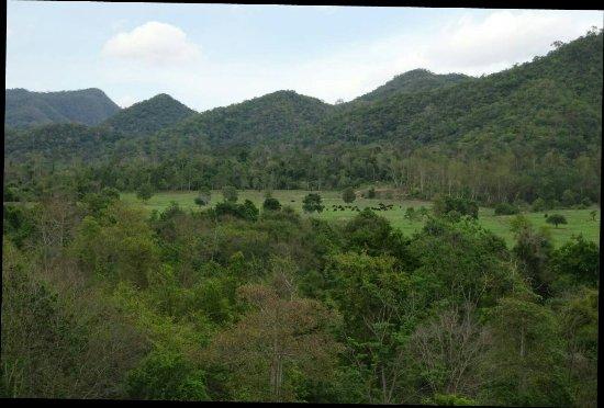 Provincia de Prachuap Khiri Khan, Tailandia: IMG_1096_large.jpg