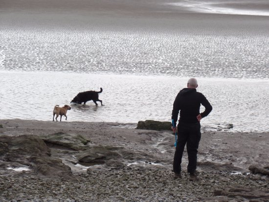 On the beach at Silverdale