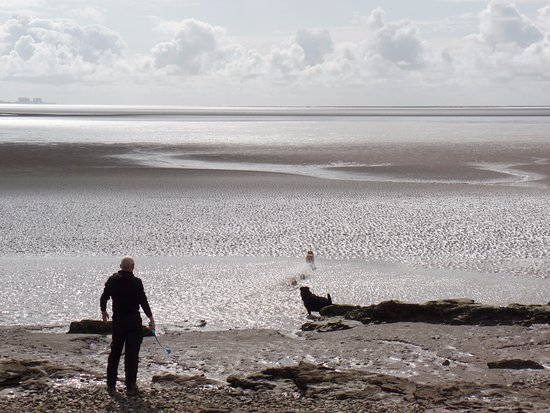 Silverdale, UK: The view across Morecambe bay
