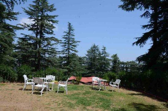 shimla british resort himachal pradesh resort reviews photos rh tripadvisor in