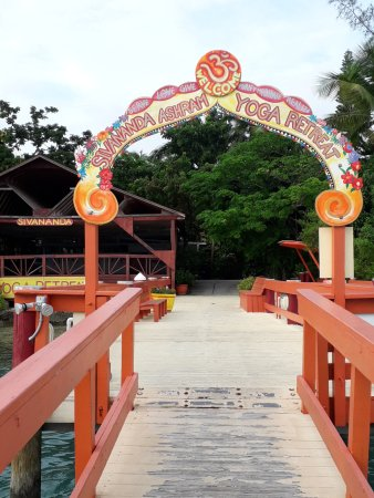 Sivananda Ashram Yoga Retreat: The arrival pier
