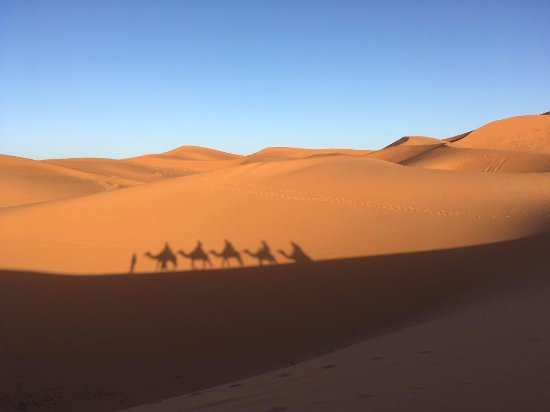 See Around Morocco: Shadow of our group