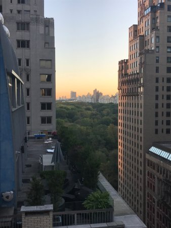 the Quin: View of Central Park