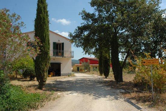 Azienda Agricola Poggio La Luna: accesso all'Azienda