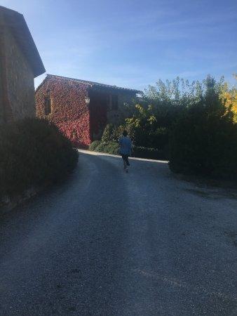Tavernelle di Panicale, Italië: Villa di Monte Solare