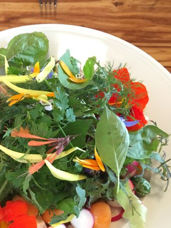 Blaustein, Deutschland: Fresh salad served directly from the garden with edible flowers