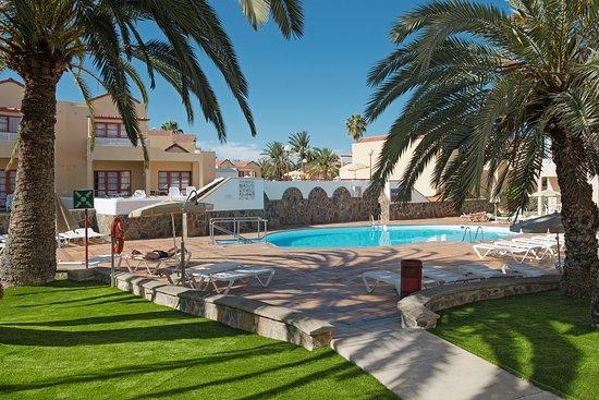 Piscina picture of apartamentos the koala garden for Piscina koala vicalvaro