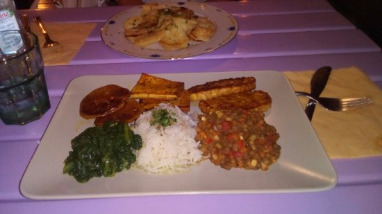 restaurant Artha: piatto misto vegetariano:tofu,seitan,riso