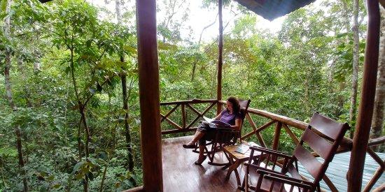 Tree Houses Hotel Costa Rica Foto