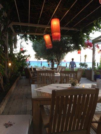 Oyster Restaurant: photo0.jpg