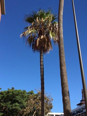 Vagabond Inn - Glendale: photo0.jpg