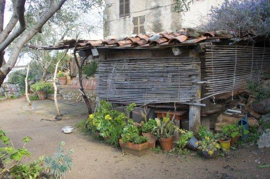 Pigna, Prancis: Terrasse