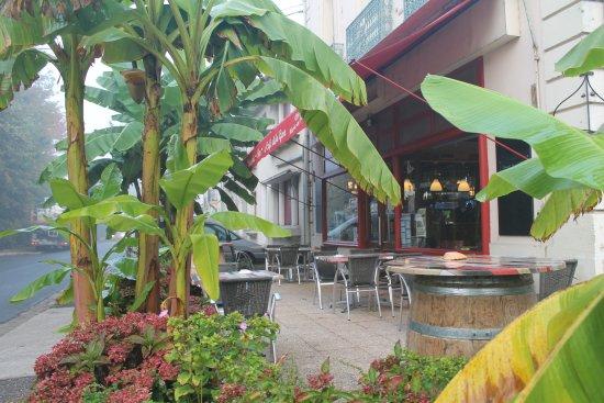 Hotel Cafe De La Gare: У отеля растут тропические деревья.
