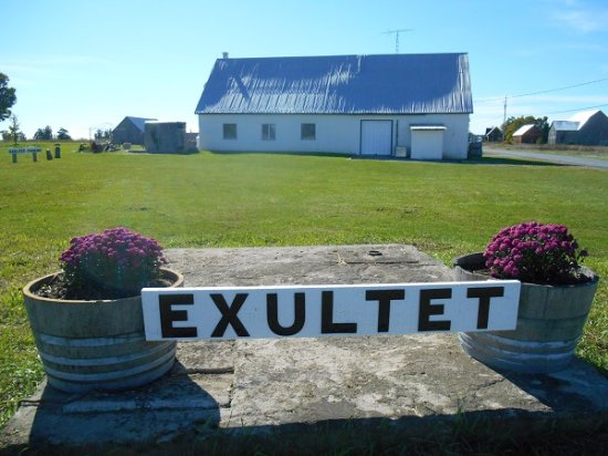 Exultet Estates Winery in MILFORD (PEC)