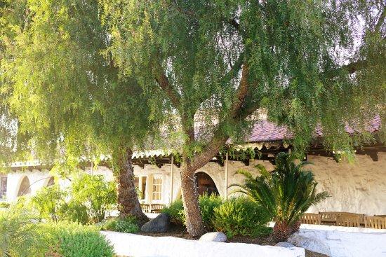 Hotel Pepper Tree: Restaurant
