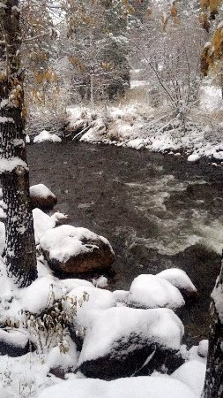 Paradise on the River: photo4.jpg