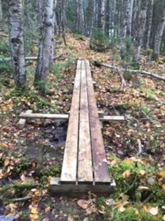 Prince George, Kanada: The point Trail: 1 of 12 boardwalks
