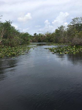 Everglades Safari Park: photo3.jpg