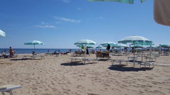 Aqua Hotel Rimini Italy Reviews Photos Price Comparison Tripadvisor