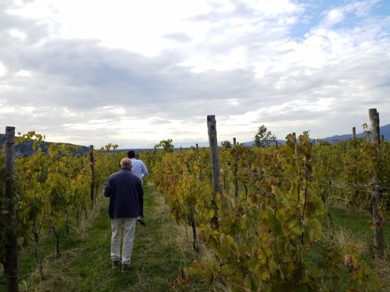 Postiglione, Italia: 20171009_162637_large.jpg