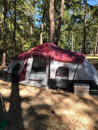 Mistletoe Park: photo2.jpg