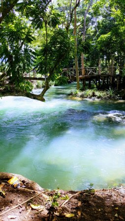 Savanna La Mar, Jamaica: Have you ever gone river tubing in a river this beautiful?!