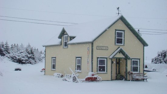 the herring cove art gallery is open year round.