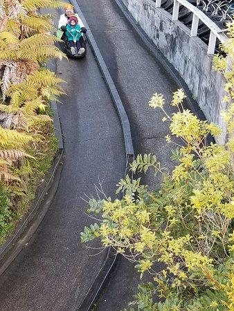 Skyline Rotorua : Going tandem