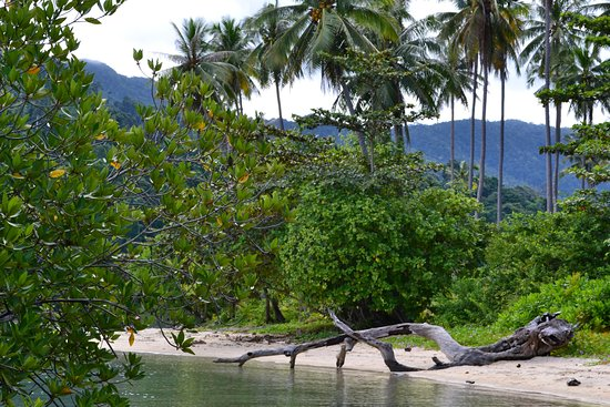 островок напротив Kai Bae Beach