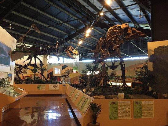 Woodland Park, CO: Dinosaurs!