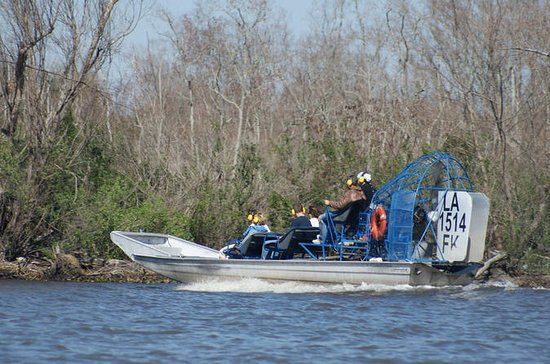 New Orleans Small Group Airboat Swamp