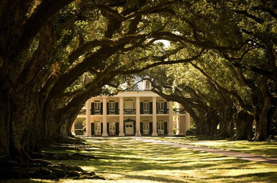 Oak Alley Plantation and Swamp Boat