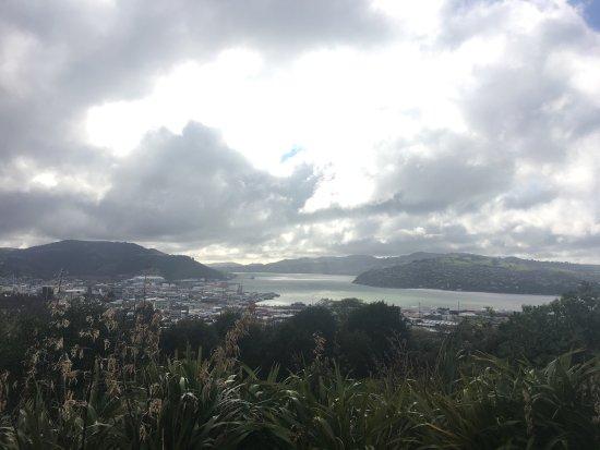 Otago Peninsula: photo0.jpg