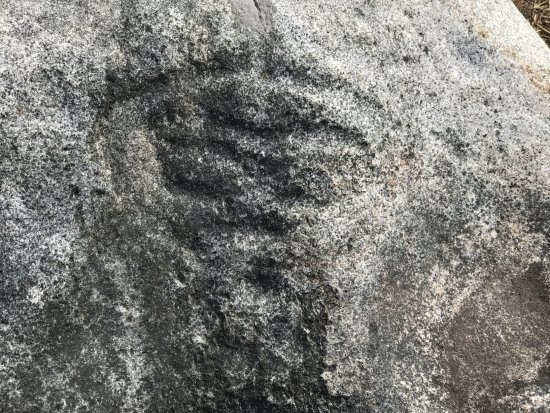 Quadra Island, แคนาดา: Petroglyph at Kwagiulth Museum and Cultural Center, #34 Weway Road, British Columbia