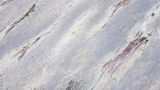 Portugal Cove, Canada: Fossils on the rock
