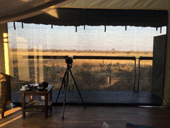 Elephant's Eye, Hwange: wonderful view of the watering hole from the room