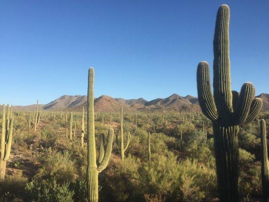 Embassy Suites by Hilton Tucson Paloma Village: photo0.jpg