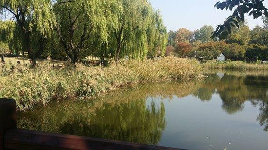 Yongsan Family Park