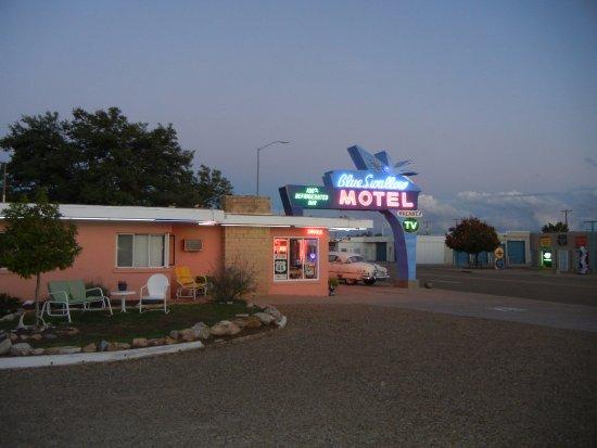 Blue Swallow Motel: Reception