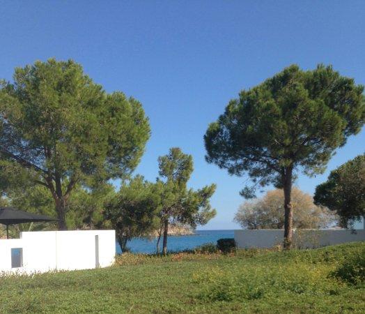 Minos Beach Art hotel: Vue de la chambre 40