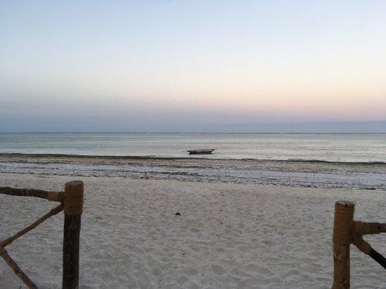 Ocean Paradise Resort & Spa: photo4.jpg