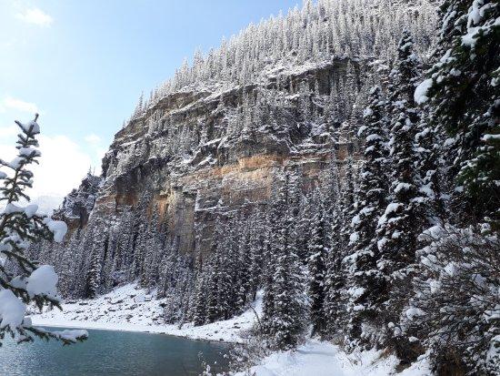 Fairmont Chateau Lake Louise Updated 2017 Prices Resort Reviews Alberta Tripadvisor