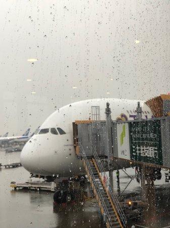 バンコクから成田空港へのフライ...