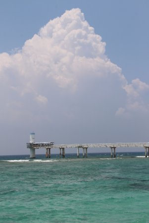 Okinawa Prefecture, Japón: underwater observatory at Okinawa, what an amazing ocean view both above and below the sea!