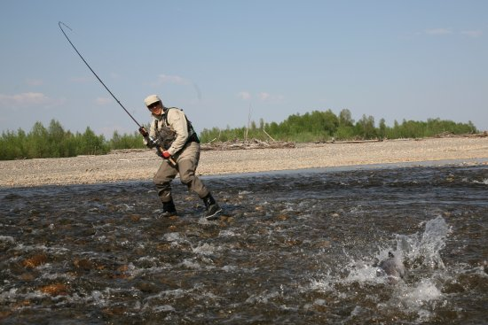 Khabarovsk Krai, Russie: Taimen fishing with Sergey outfitter www.sergoutfitter.com