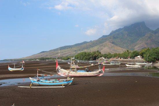 Pasir Putih Beach : pasir putih fisherman village
