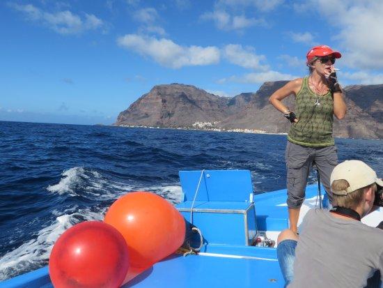 Hval og Dolphin Watching på Kanariøyene: View of Valle Gran Rey from the boat