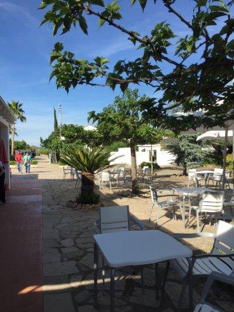 imagen Restaurante Planes del Reine en Valencia